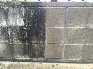 Helensvale Pressure Cleaner: Bricks before and after mould removal