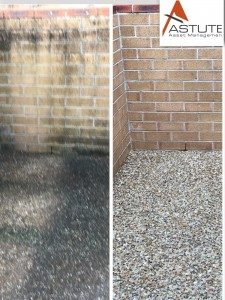 Coomera pebblecrete high pressure clean before and after photo